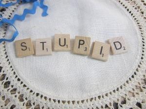 stupid-1245103_1920